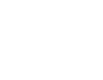 Digital Impact Lap